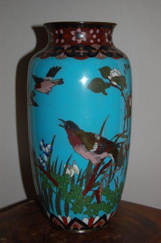 Antique Large Chinese Cloisonne Vase Birds - 19thc photo