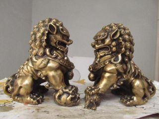 China Regius Palace Brass Door Talisman Fu Foo Dog Evil Guardian Lion Pair photo