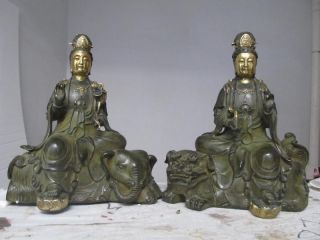 China Folk Bronze Gilt Manjusri Samantabhadra Bodhisattva Pair 8668 photo