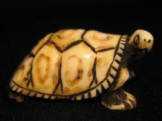 Antique Japanese Ox Bone Black Ink Washed Netsuke Turtle,  Signed photo