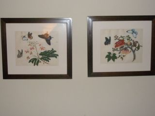 2 Antique Chinese Watercolor On Rice Paper Circa 1825 Butterflies On Flowers photo