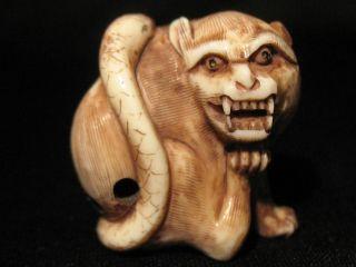 Antique Japanese 象牙 Ox Bone Netsuke Monkey W.  A Snake,  Signed,  Amazing Details photo