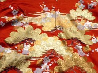 Japanese Kimono Wedding Uchikake,  Dress,  Gown,  Furisode photo