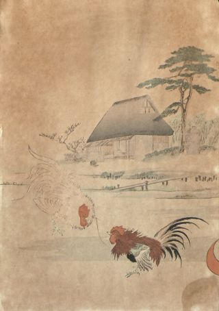 Old Japanese Colored Woodblock Cock - Fighting photo