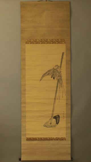 Japanese Hanging Scroll : Ohara Donshu @b124 photo
