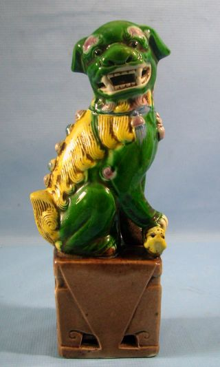 Tri - Col0r Temple Foo Dog 8.  5