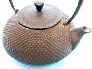 Japanese Iron Teapot Tetsubin Anteique Signed Nanbu photo