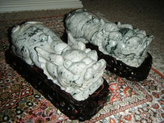 A Pair Of Jadeite Foo Dogs Large On Carved Wooden Stands 11