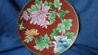 Chinese Cloisonne Plates photo