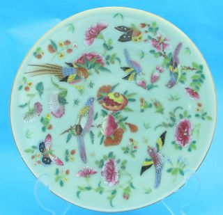 Antique Chinese Celadon Porcelain Famille Rose Enamel 4090 photo