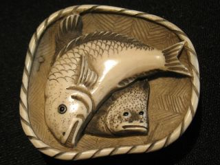 Rare Antique Japanese 象牙 Inked Ox Bone Netsuke Two Fishes On A Plate,  Signed photo