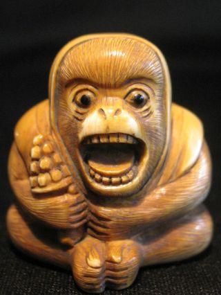 Antique 19th C Japanese 象牙 Ox Bone Netsuke Screaming Monkey,  Signed Tomomasa photo