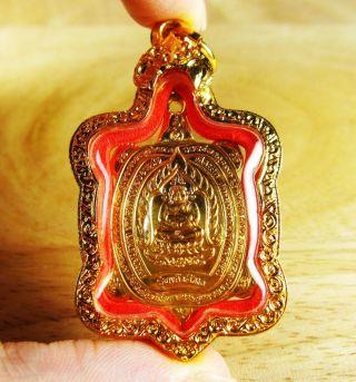 Thai King Turtle Buddha Amulet Lp Liew Business Success,  Long Life,  Wealth photo