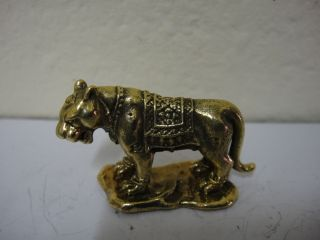 Powerful Tiger Honor Respect Attract Charm Thai Amulet photo