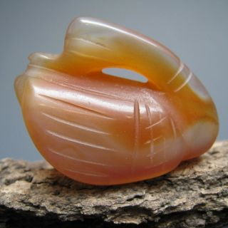 China ' S Tibet Agate Hand - Carved The Gorgeous Quietly Swan Charm Nr photo