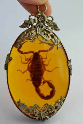 ❤ Orient Old Collectibles Handwork Amber Armoured Butterfly Scorpion Pendant ❤ photo