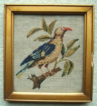 Antique Framed Miniature Woolwork Embroidery Sampler Of A Bird C1880 photo