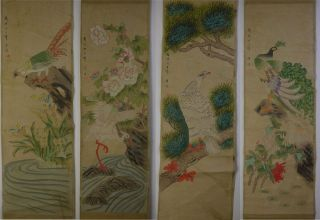 4 Kacho - Zu Chinese Hanging Painting & Scroll Pheasant Egret Hawk Peacock photo