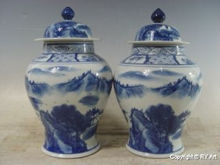 Pair Chinese Blue White Porcelain Ginger Jars 13