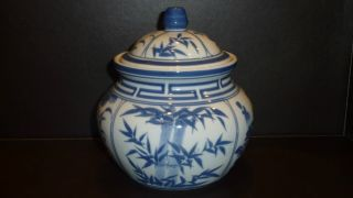 Blue And White Chinese Porcelain Ginger Jar Pot photo