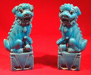 Chinese Blue Porcelain Foo Dog Statues photo