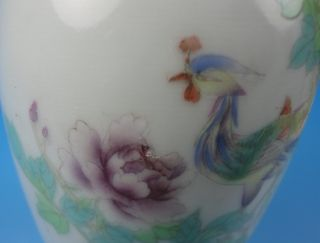 Chinese Porcelain - - A Famille Rose Vase - - Bird And Flower 208 photo