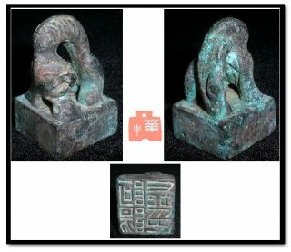 Vintage China Han Kingdom Country Town Official Stamp Bronze Dragon Statue Seal photo