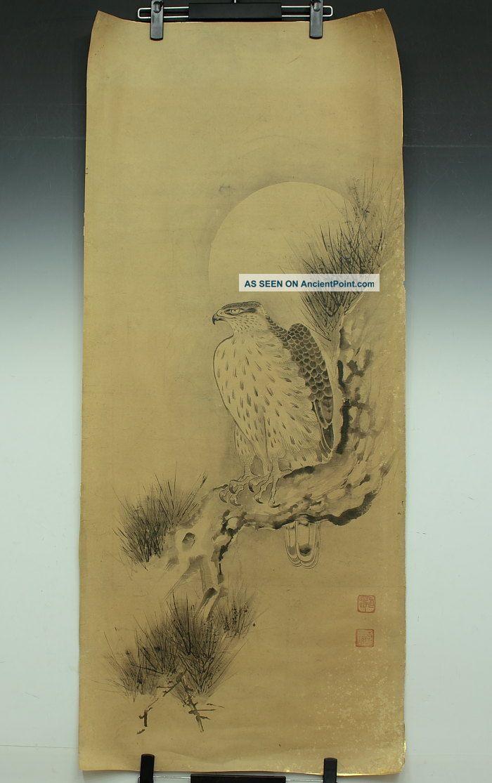 Jiku893 Jf Japan Makuri Scroll Soga Nichokuan Hawk Paintings & Scrolls photo