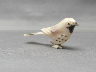 Antique Carved Ox Bone Faux Ivory Realistic Miniature Bird Figurine Okimono photo
