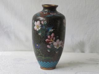 Antique Japanese Cloisonne Meiji Period Rare Design Bird 5 1/3