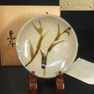 F370: Japanese Karatsu Pottery Ware Small Plate By Kyosuke Fujiwara With Box. photo