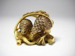 Netsuke Two Quails Rare Inro Style Japanese Antique Supreme Carving photo