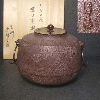 F447: Japanese High - Quality Iorn Teakettle Chagama By Famous Josei Sato With Box photo