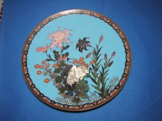 Large 19th Century Japanese Cloisonne Charger Dish Meiji Period photo