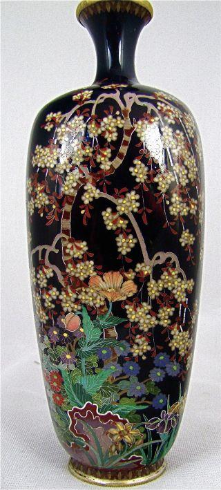 Fine Antique Silver Wire Japanese Meiji Cloisonne Vase Signed Daikoku photo