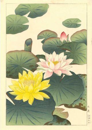 Nishimura Hodo Japanese Woodblock Print Lotus Blossoms photo