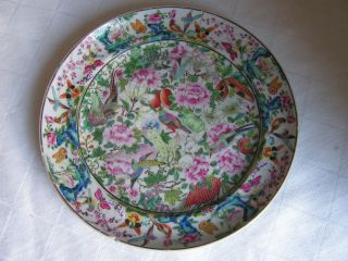 18th Century Famille Rose Chinese Porcelain Plate photo