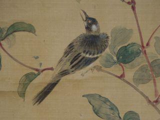399 Japanese Jiku Kakejiku Hanging Scroll Japan art A Flower A Bird Kacho zu photo