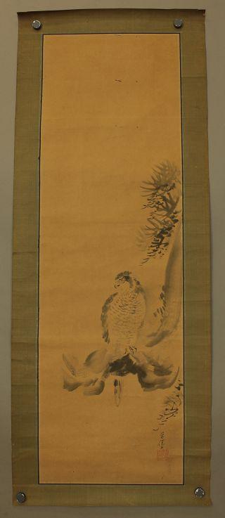 Japanese Honshi