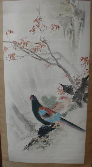Vintage Japanese Pheasant Pair Tree Bough Hand Painted Scroll Kakejiku 179 photo