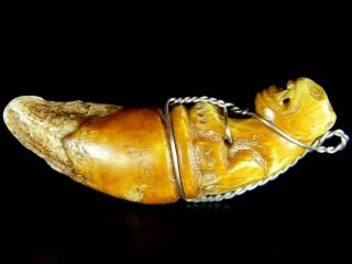 Old Tiger Carve Jungle King Tooth Fang Lp Pern Hunter Bead Amulet Pendant 1.  6