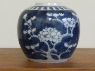Small Blue Prunus Ginger Jar.  9cm.  Two Blue Rings photo