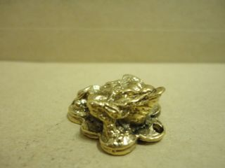 Frog Hunting Money Wealth Love And Good Luck Amulet photo