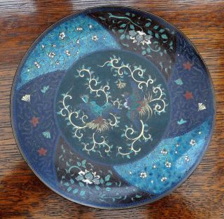 Antique Japanese Cloisonne Enamel Plate With 2 Oriental Birds 8 1/2