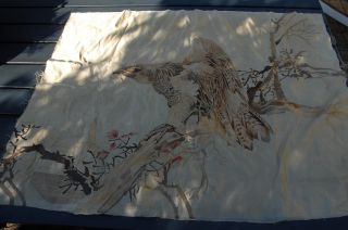Antique Japanese Silk Color Tapestry,  Hawk On Tree photo