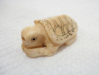 Antique Japanese Netsuke Carved Faux Ivory Ox Bone Turtle Bead Tortoise Carving photo