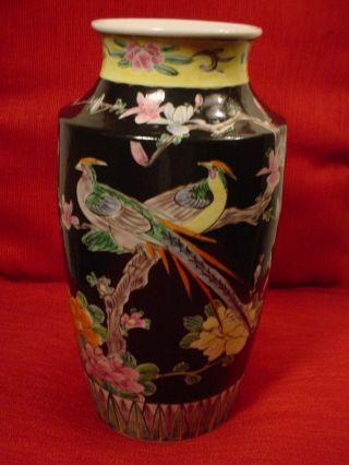 Antique Porcelain Famille Noire Wedding Vase Birds Of Paradise / Flowering Trees photo