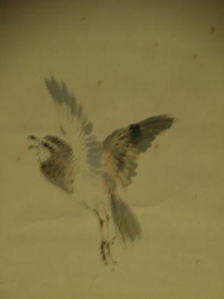 Hanging Scroll With Bird Design W - 2 photo