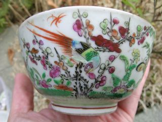 Antique Chinese Famille Verte Bowl Butterflies Birds From Old Collection Nr photo