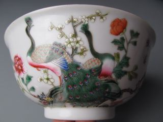Fine Chinese Famille Rose Porcelain Peafowl Bowl photo